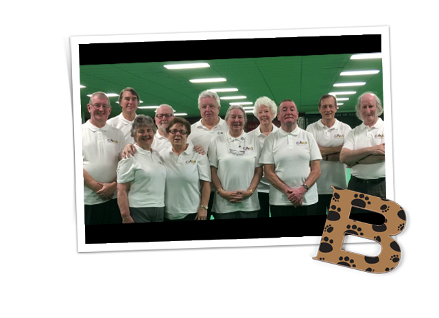 Profile image of Friends of CHAS Bowling Club