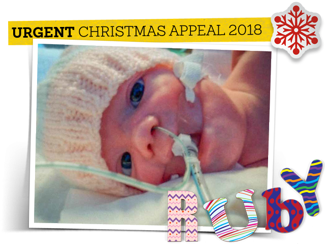 Ruby - CHAS Christmas Appeal 2018