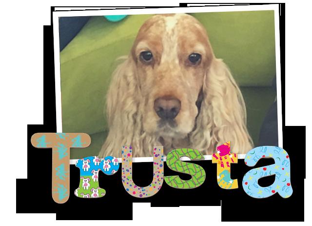 Profile image of Trusta